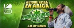 qn-03-sept-16-_aricannabis-2016-arica-chile